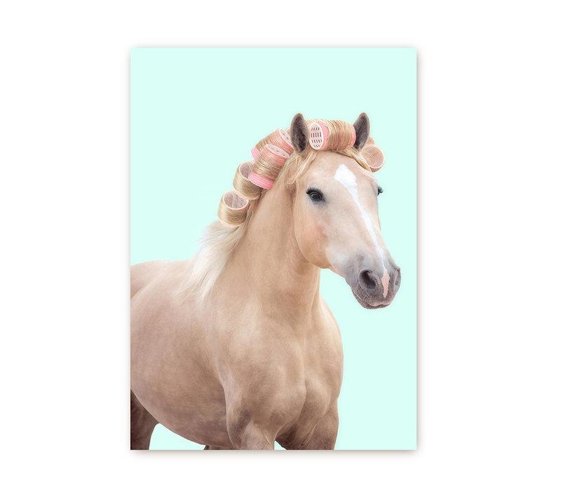 Paard met krullen