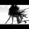 Wandkraft Black Swan - Metropolitan collectie