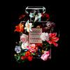 Wandkraft The Perfume Collection VI