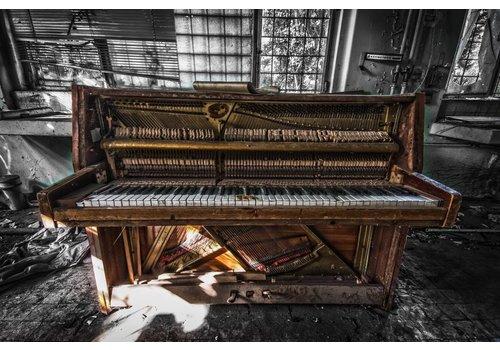 Brian van Daal Crazy Piano