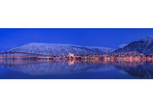 Vincent Fennis Arctic City