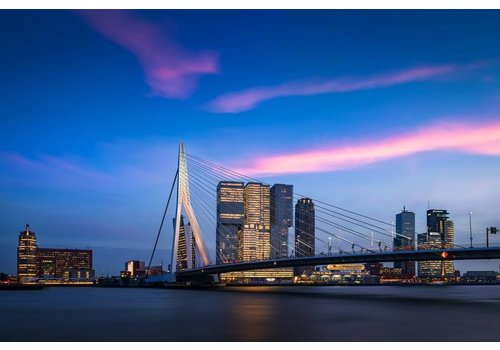 Vincent Fennis The Bridge | Rotterdam skyline