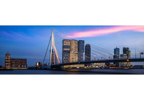 Vincent Fennis The bridge panorama | Rotterdam skyline