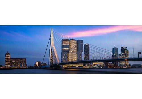 Vincent Fennis The bridge panorama | Rotterdam skyline