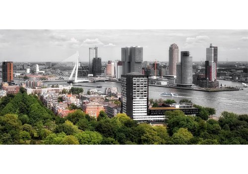 Ben Kleyn The buildings of Rotterdam