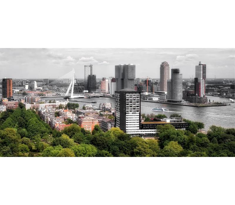 The buildings of Rotterdam