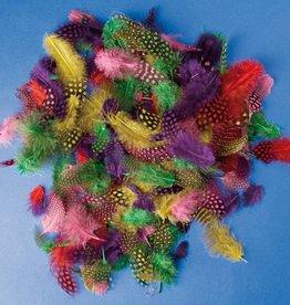 Playbox Gekleurde Parelhoenveertjes