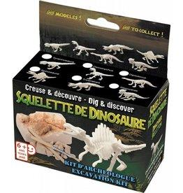 Mini Archeologie kit Dinosaurus