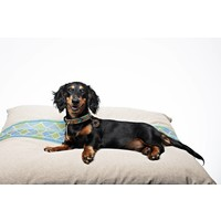 Dog pillow Cooper S/M