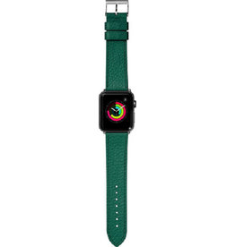 LAUT Milano AW 38/40mm Emerald