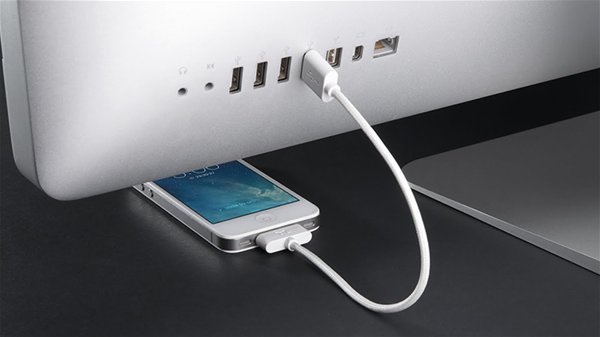 Bluelounge Extra 30 pin cable Sanctuary 4 (20cm)