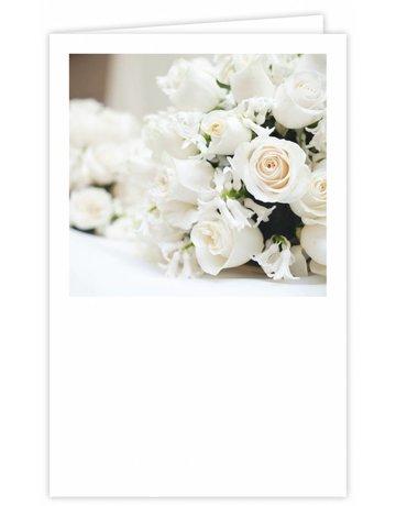 Witte rozen Groot Formaat 12 St.