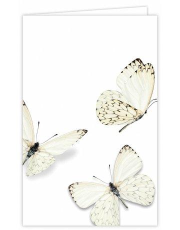 Vlinder Groot Formaat 12 St.