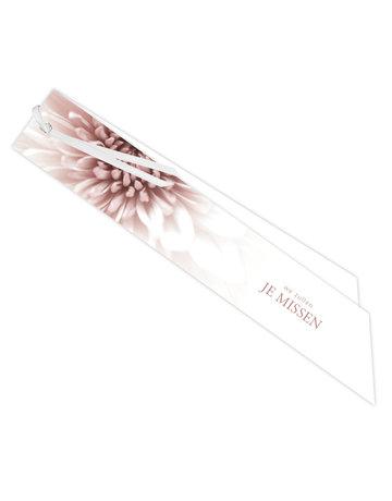 Chrysant Ribbon 20 St.