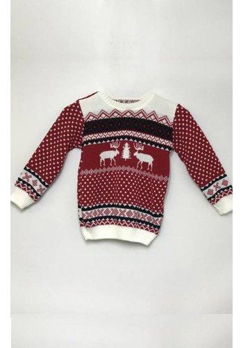 Kersttrui kinderen   De leukste truien voor jongens en