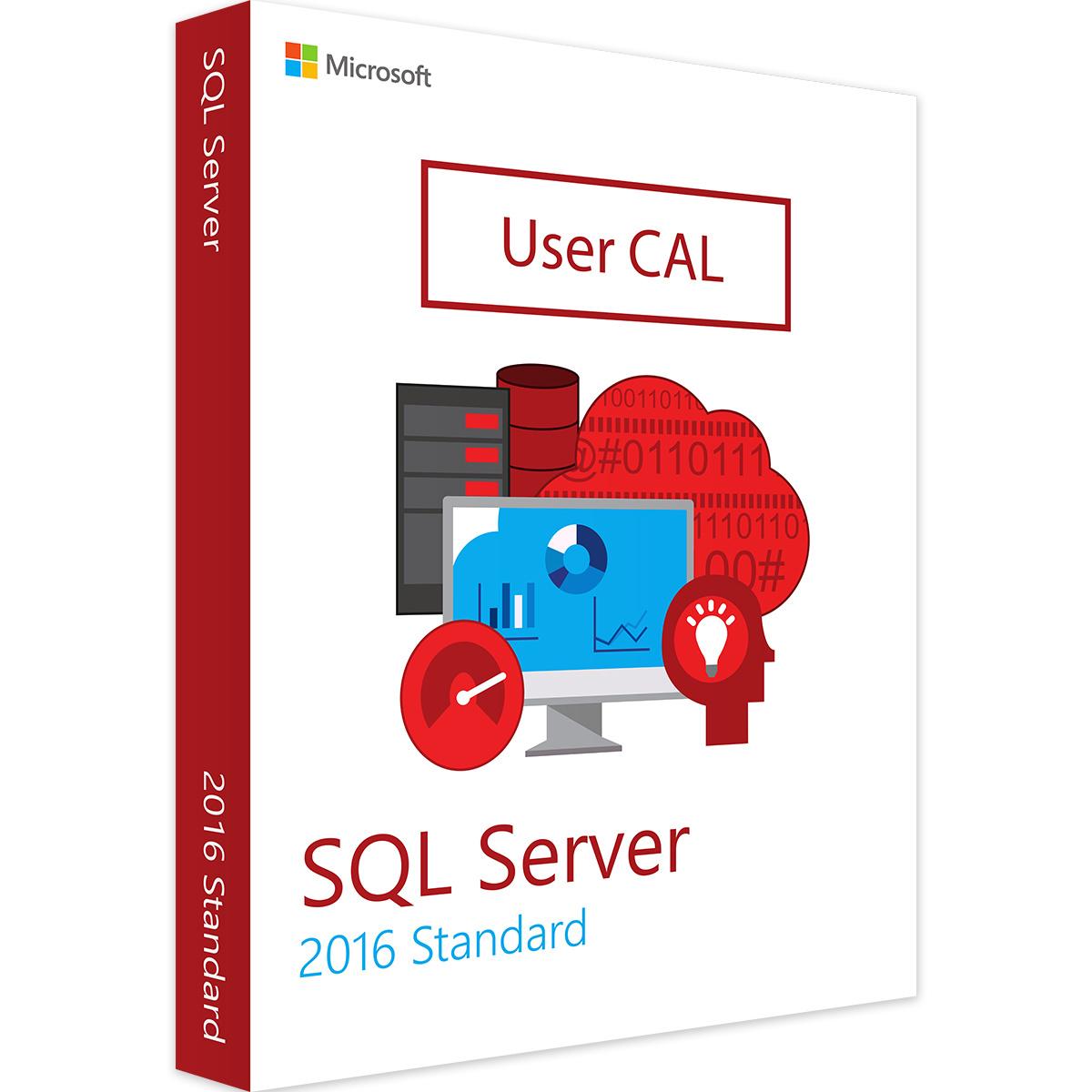 Microsoft SQL Server 2016 User CAL - MS Open License