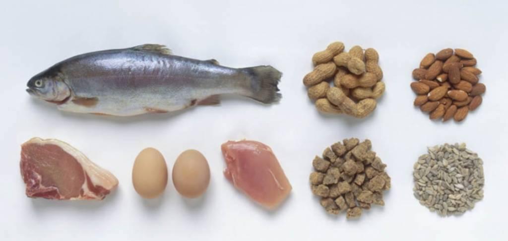 De juiste eiwitrijke voeding voor vegetariërs en veganisten