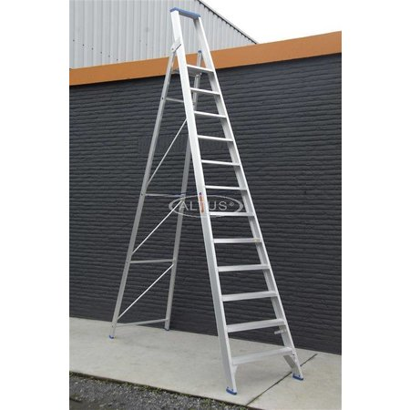 Solide Solide enkele professionele trapladder model PT 12 treden