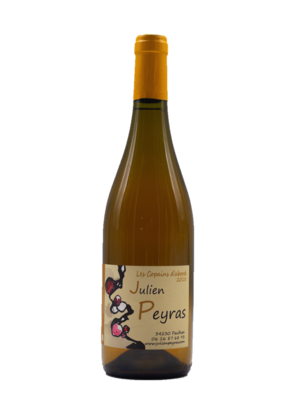 Julien Peyras Les Copains d'Abord