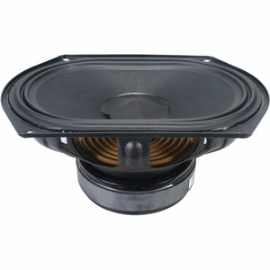"Tang Band W69-1042J 6""x9"" Subwoofer"