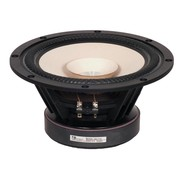 Tang Band W8-2145 Full-range Woofer