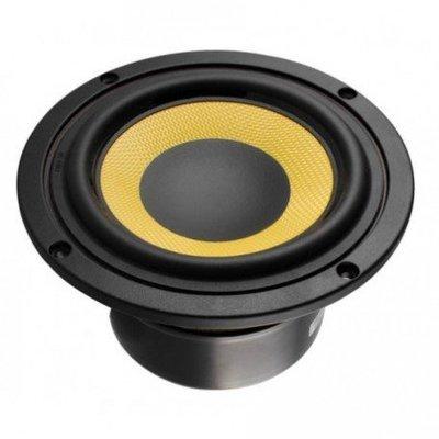"""Tang Band W5-610SG 5"""" Kevlar Woofer"""