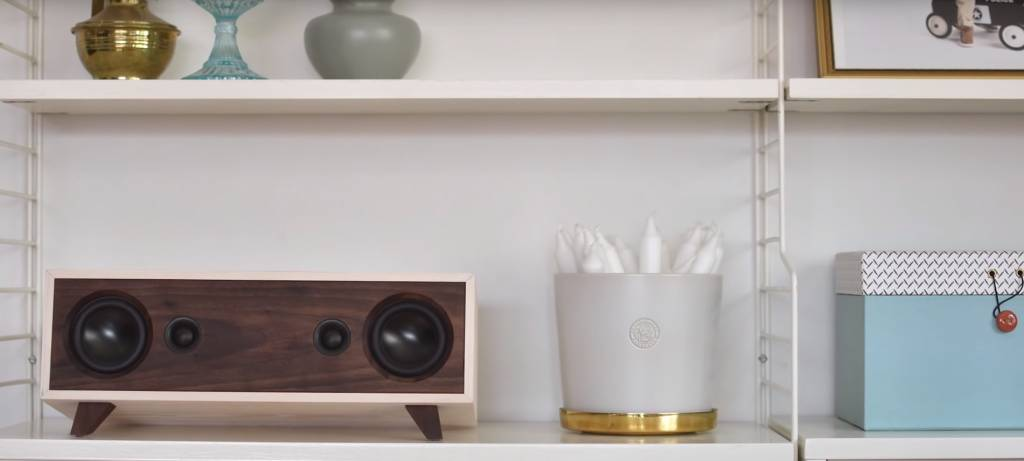 #19 DIY Project: Bluetooth Speaker Build by Youtuber Erik