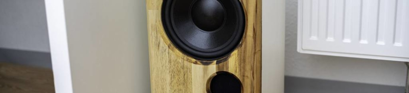 Living Room Subwoofer with Dayton Audio