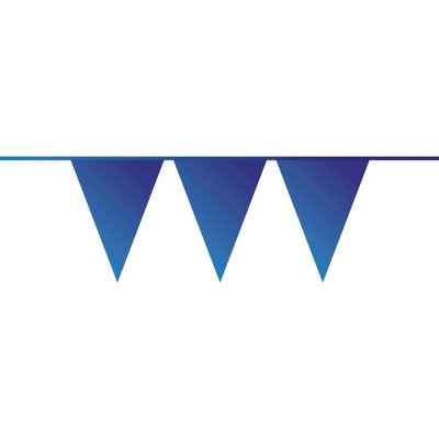 Vlaggenlijn blauw ( 10 meter)