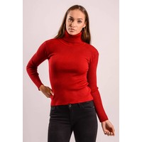 High turtle neck ribbed bordeaux