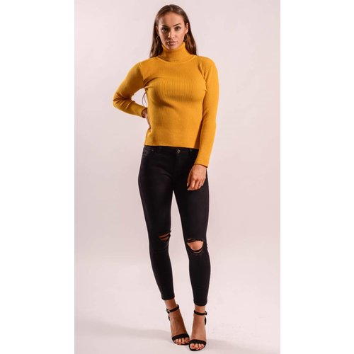 High turtle neck ribbed yellow