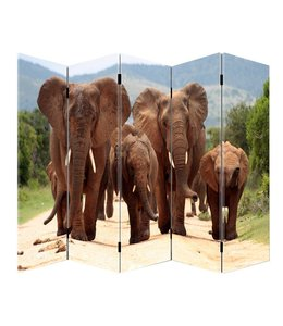 Kamerscherm Olifanten groep