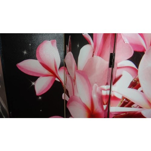 Canvas Kamerscherm Frangipani