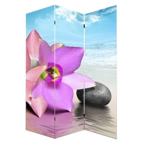 Canvas Kamerscherm Orchidee, Steen en Zee