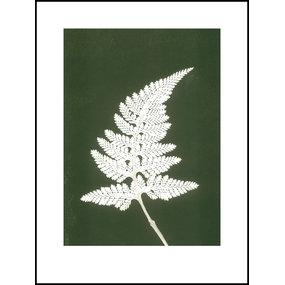 Pernille Folcarelli Fern white print
