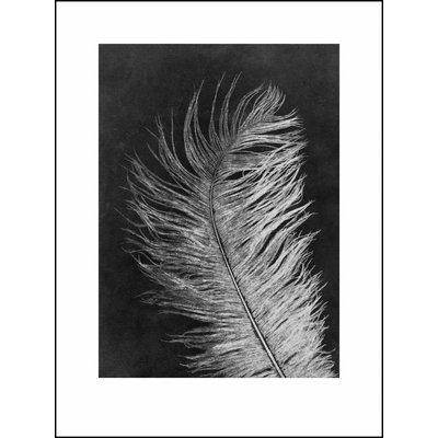 Pernille Folcarelli Feather white print