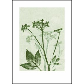 Pernille Folcarelli Ground elder green print