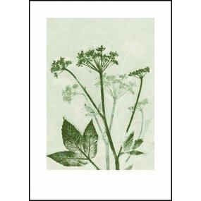 Pernille Folcarelli poster groen zevenblad