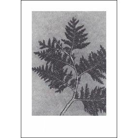 Pernille Folcarelli poster grijze levensboom