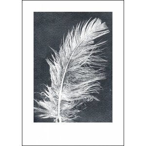 Pernille Folcarelli Pernille Folcarelli Feather white print
