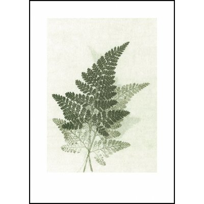 Pernille Folcarelli print groene varen
