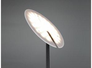 vloerlamp  423010232  Edmonton