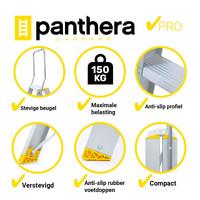 Panthera Panthera dubbele trap 2x2 treden