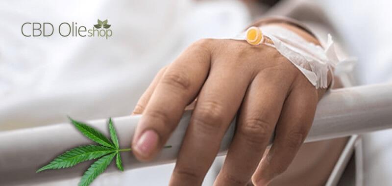 CBD Olie tegen Leukemie
