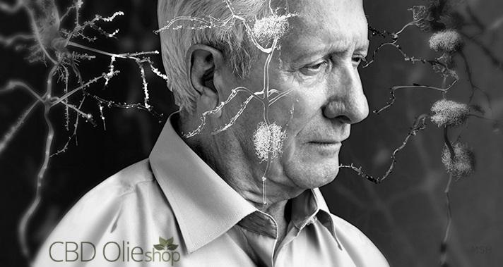 CBD Tegen Alzheimer