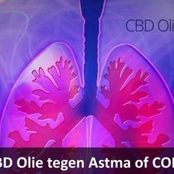 CBD Olie tegen Astma of COPD