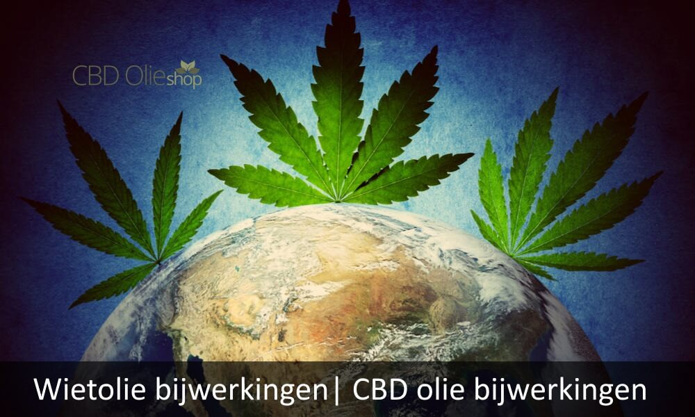 Wietolie bijwerkingen| CBD olie bijwerkingen