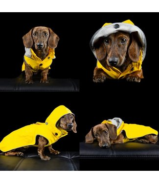Rukka Hunde Regenmantel Stream - Gelb