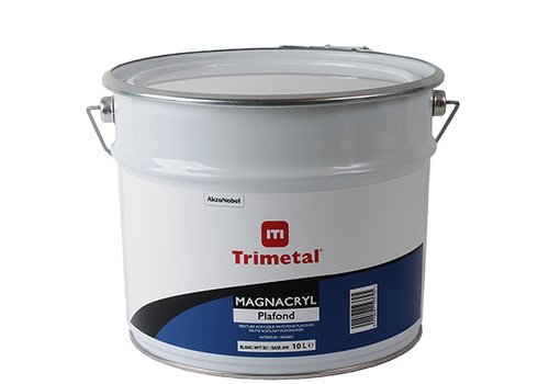 Trimetal Magnacrylic Ceiling
