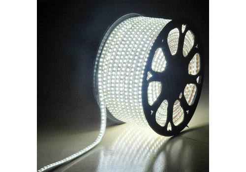 LED Light hose flat 50m color 6500K 60 LEDs/m IP65 Plug & Play cut per metre
